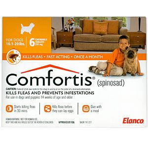 Comfortis Jlee Blog Dogs Animal Treatment Dogs Online