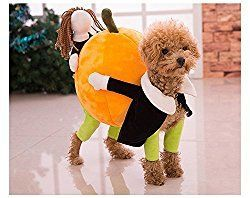 Funny Dog Costume Carrying Pumpkin Dog Costumes Puppy Clothes