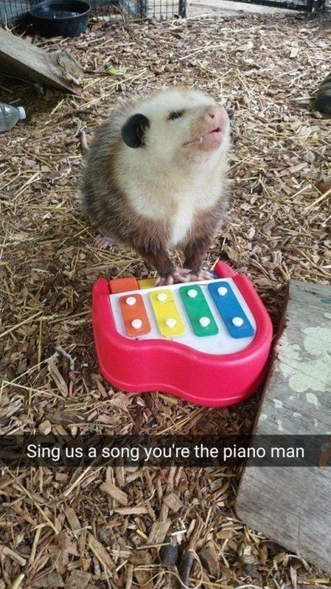 36 Random Memes To Keep You Entertained For Hours - Memebase - Funny Memes