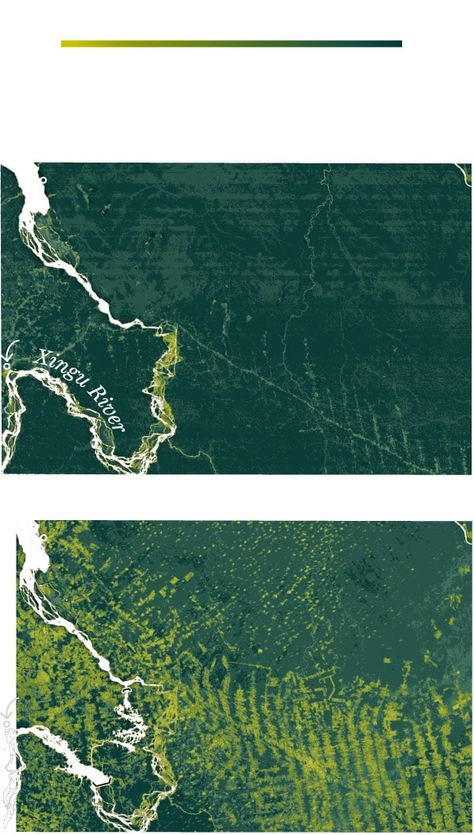 How A Building Boom In The Brazilian Amazon Could Accelerate Its