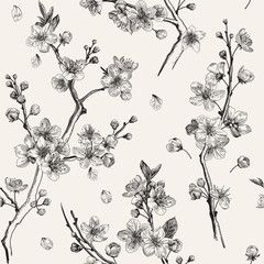 Material Do Szycia Sakura Jednolity Wzor Kwiat Wisni Galezi Botanicznych Ilustracji Cherry Blossoms Illustration Cherry Blossom Branch Cherry Blossom Vector