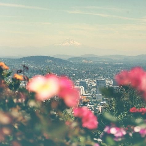 .@Penny Douglas People | Dreaming of Portland today... visit the blog to read about it and enter to wi...