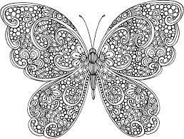 24 Mandalas mariposas significado