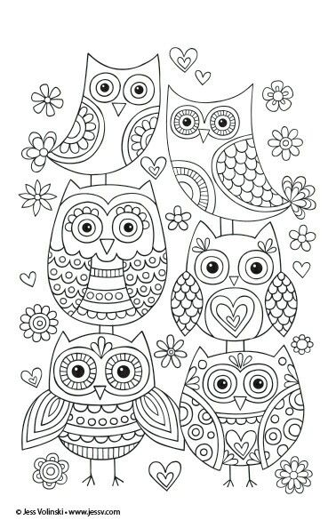 Cute Owls You Can Draw At Home You Can Use Them For Temples For