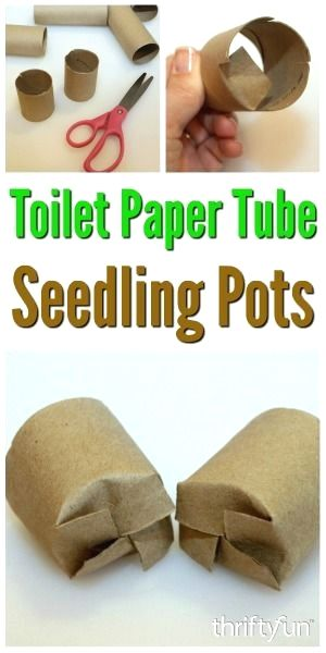 A great way to recycle toilet paper tubes is to use them as containers to start vegetable and flower seeds for garden plants. This is a guide about toilet paper tube seedling pots. #gardeningideas