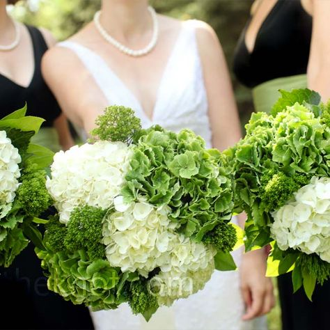 White and Green Bouquets- I like the hydrangia look. We could do this for the bridesmaids only smaller boquets.