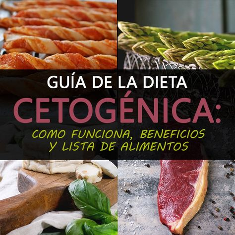Guia dieta cetogenica