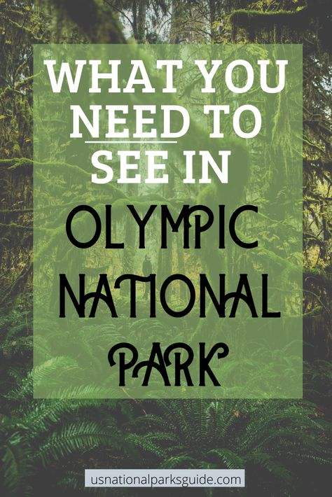 Olympic National Park: 7 Places You Must See — US National Parks Guide Congaree National Park, Cairngorms National Park, North Cascades National Park, Crater Lake National Park, Everglades National Park, Plitvice Lakes National Park, National Parks Map, National Park Posters, California National Parks