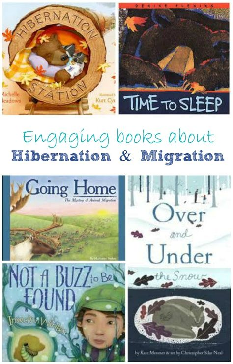 Learn about how animals prepare for winter with these wonderful books & a few fun hands-on activities for kids.