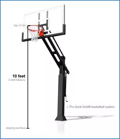 Best Of Regulation Pro Basketball Hoop Height Pro Basketball Basketball Hoop Official Nba Basketball