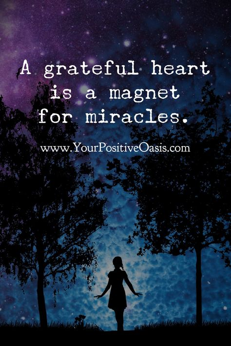 This wonderful collection of gratitude quotes serve as a wonderful reminder of how grateful we should be on a daily basis. Gratitude Quotes, Positive Quotes, Motivational Quotes, Inspirational Quotes, Random Quotes, Strong Quotes, A Course In Miracles, Encouragement, Grateful Heart