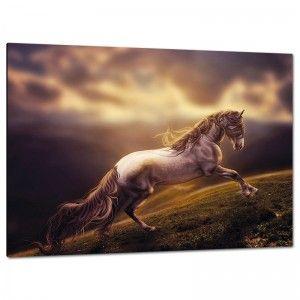C2244 تابلوه مودرن تابلوه مودرن تابلوهات مودرن تابلوهات براويز مودرن صور براويز تابلوهات خشب تابلوهات مودرن 2018 Horse Wallpaper Horses Fantasy Horses