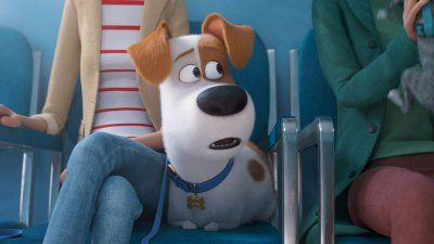 The First Trailer For The Secret Life Of Pets 2 Secret Life Of Pets Dog Movies Animated Movies