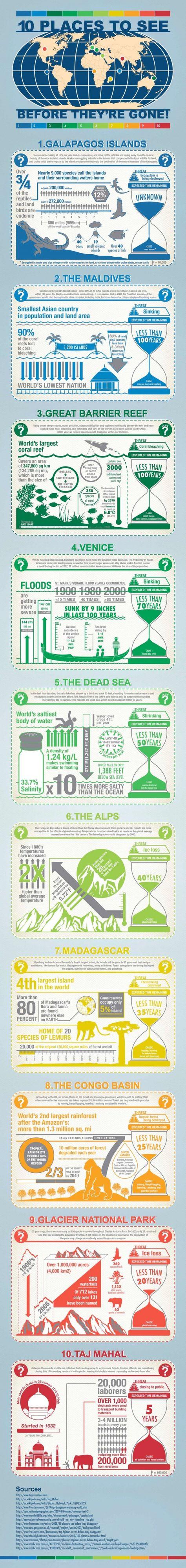 Infographic Ui Ux Design