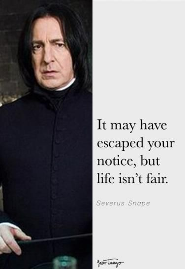 15 Of The Best Snape Quotes From Harry Potter Snape Zitate Hp Zitate Zitate Aus Harry Potter