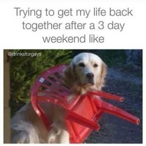 3 Day Weekend Meme Kappit 3dayweekendhumor 3 Day Weekend Meme Kappit 3dayweekendhumor 3 Day Weekend Meme Kapp In 2020 Weekend Meme Weekend Humor Funny Pictures