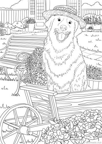Gardener Favoreads Coloring Club In 2020 Dog Coloring Book Dog Coloring Page Animal Coloring Pages