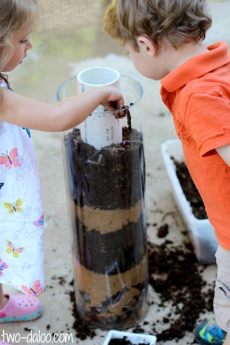 How to make make a giant observation tower for earthworms.  A great way to observe worms for several days!