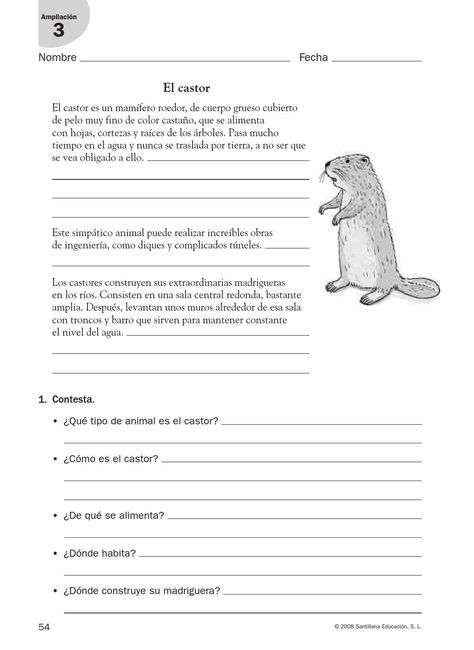 64 Animales Ideas Ccnn Dinosaurs Preschool Dinosaur Activities Preschool