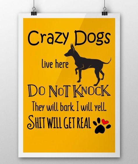 169 Besten Dog Musings Bilder Auf Pinterest | Hunde, Hundesprüche Und  Gedanken