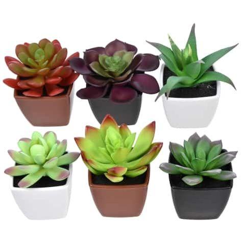 Artificial Potted Succulent Plants