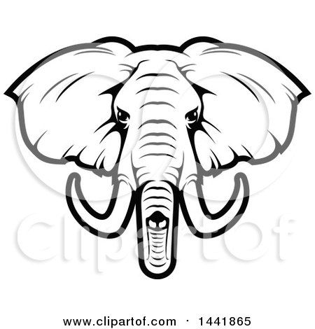 Elephant Face Clipart Elephant Face Drawing At Getdrawings Free For Personal Use Clipart Download Wal Elephant Face Drawing Elephant Art Drawing Elephant Face