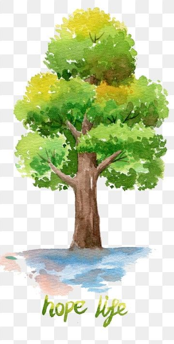 Tree Png Images Download 81000 Tree Png Resources With Transparent Background Page 4 In 2021 Watercolor Tree Tree Watercolor Painting Watercolor Landscape