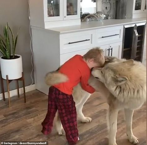The young boy also gives Archer a sweet hug during the video, which has been widely shared...