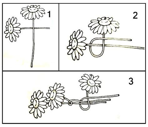 Daisy chain instructions, I was taught by my older sister. Diy Flower Crown, Diy Flowers, Flower Crowns, Diy Crown, Cute Crafts, Diy And Crafts, Crafts For Kids, Arts And Crafts, Beltane