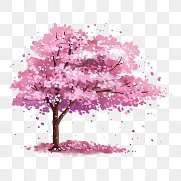 Pink Romantic Cherry Blossom Tree Under The Cherry Blossoms Big Tree Cherry Blossom Cherry Tree Png Transparent Clipart Image And Psd File For Free Download Cherry Blossom Background Cherry Blossom Tree
