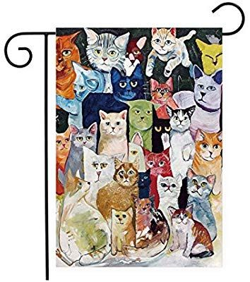 Amazon Com Cute Cats Kitties Garden Flag Holiday Decorative Banner 100 Polyester Garden Outdoor Cats Cat Kitties Kitten Cute Cats Cat Theme Kitty