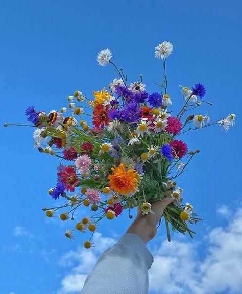 Bouquet, Flower Quotes, Flower Beds, Pretty Flowers, Life Is Beautiful, Aesthetic Wallpapers, Pixel Art, Planting Flowers, Flower Arrangements