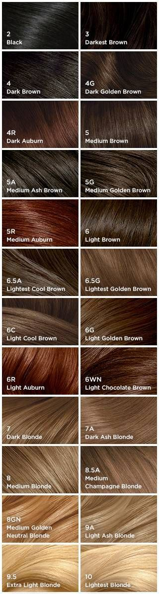 Best Hair Color Charts Clairol hair color chart, Clairol hair - hair color chart