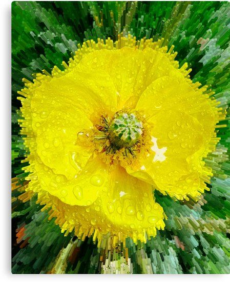 Gelbe Mohnblume Leinwanddruck Von Marionsart Acrylmalerei Blumen Mohnblume Kunstler Leinwand