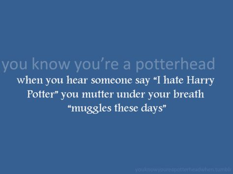 """When you hear someone say """"I hate Harry Potter"""", you mutter under you breath """"muggles these days"""""""