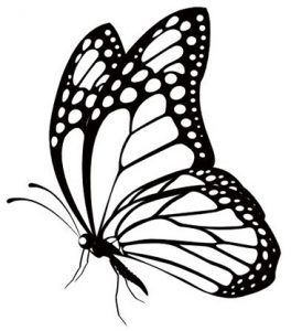 Butterfly Png 999 Butterfly Clipart Black And White Free
