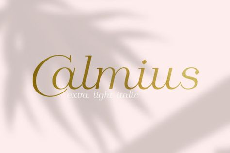 Calmius (Font) by NREY · Creative Fabrica