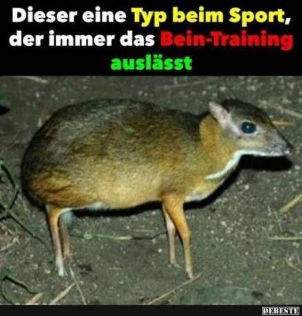 Trendy Sport Lustig Ich Beim 61 Ideas Funny Pictures Gym Memes Funny Cute