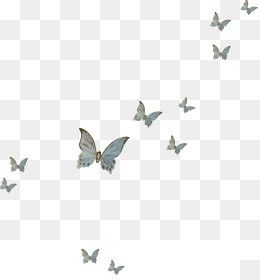 Free Download Butterfly Fly Png Image Iccpic Iccpic Com Butterflies Flying Butterfly Clip Art