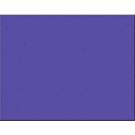 """Pacon Posterboard 4-Ply 22/""""X28/""""-White"""