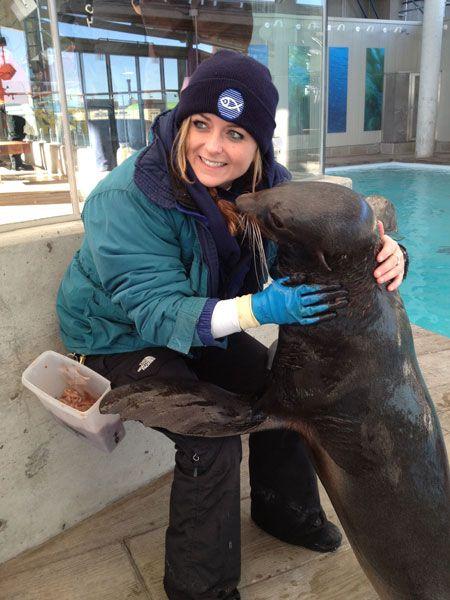 The fur seals at the Aquarium are toasty warm in their winter coats. Marine Biology Jobs, Zoologist Career, My Future Job, New England Aquarium, Zoo Keeper, Pet Vet, Nine Lives, Weird Dreams, Ocean Life