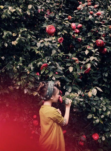 – Скажите, пожалуйста, – несмело начала Алиса, – а почему вы красите эти розы?  Шестерка с Семеркой переглянулись и, как по команде, поглядели на Двойку.  – Тут, барышня, такая история вышла, – понизив голос, начал Двойка. – Велено нам было посадить розы, полагаются тут у нас красные, а мы, значит, маху дали – белые выросли. Понятное дело, если про то ее величество проведают – пропали, значит, наши головушки. Вот мы, это, и стараемся, значит, грех прикрыть, пока она не пришла, а то…