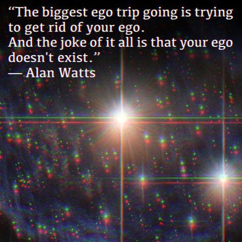 Top quotes by Alan Watts-https://s-media-cache-ak0.pinimg.com/474x/67/95/3b/67953b611822c03aebde21e7638055e7.jpg