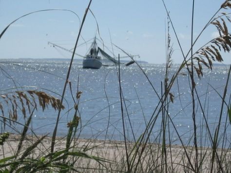 Beautiful pictures of shrimp boats -  http://www.squidoo.com/shrimp-boats