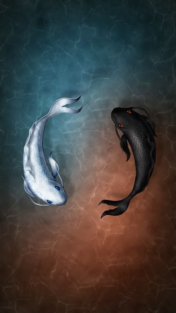 Iphone Wallpaper With Images Fish Wallpaper Koi Koi Fish