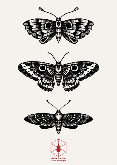 Tattoos, body tattoos, new tattoos, traditional butterfly tattoo, black whi Leg Tattoos, Body Art Tattoos, Small Tattoos, Sleeve Tattoos, Cool Tattoos, Tattos, Tattoo Dotwork, 16 Tattoo, Tattoo Sketches