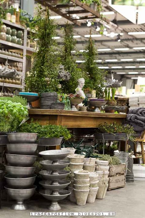 Store Fronts Retail Displays Ideas On Pinterest By