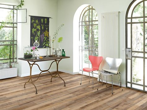 Laminat wohnzimmer ~ Parador laminat basic 200 in nussbaum #laminat #vinyl