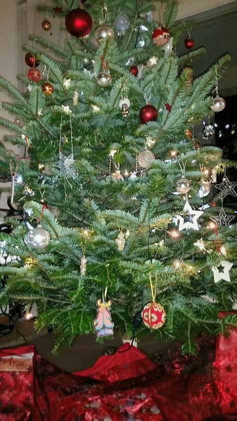 Ich wünsche Euch ein wunderschönes Weihnachtsfest und für das neue Jahr Gesundheit, Glück und Erfolg.   I wish you a Merry Christmas, health and success in the New Year.