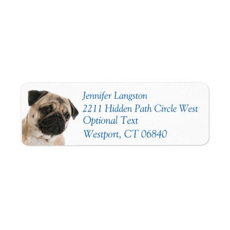 Pug Puppy Dog Return Address Name Label Zazzle Com Dogs And